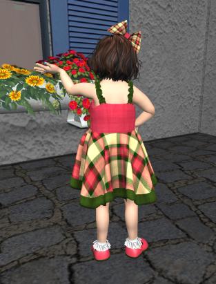 Watermelon Plaid Dress ~ back view